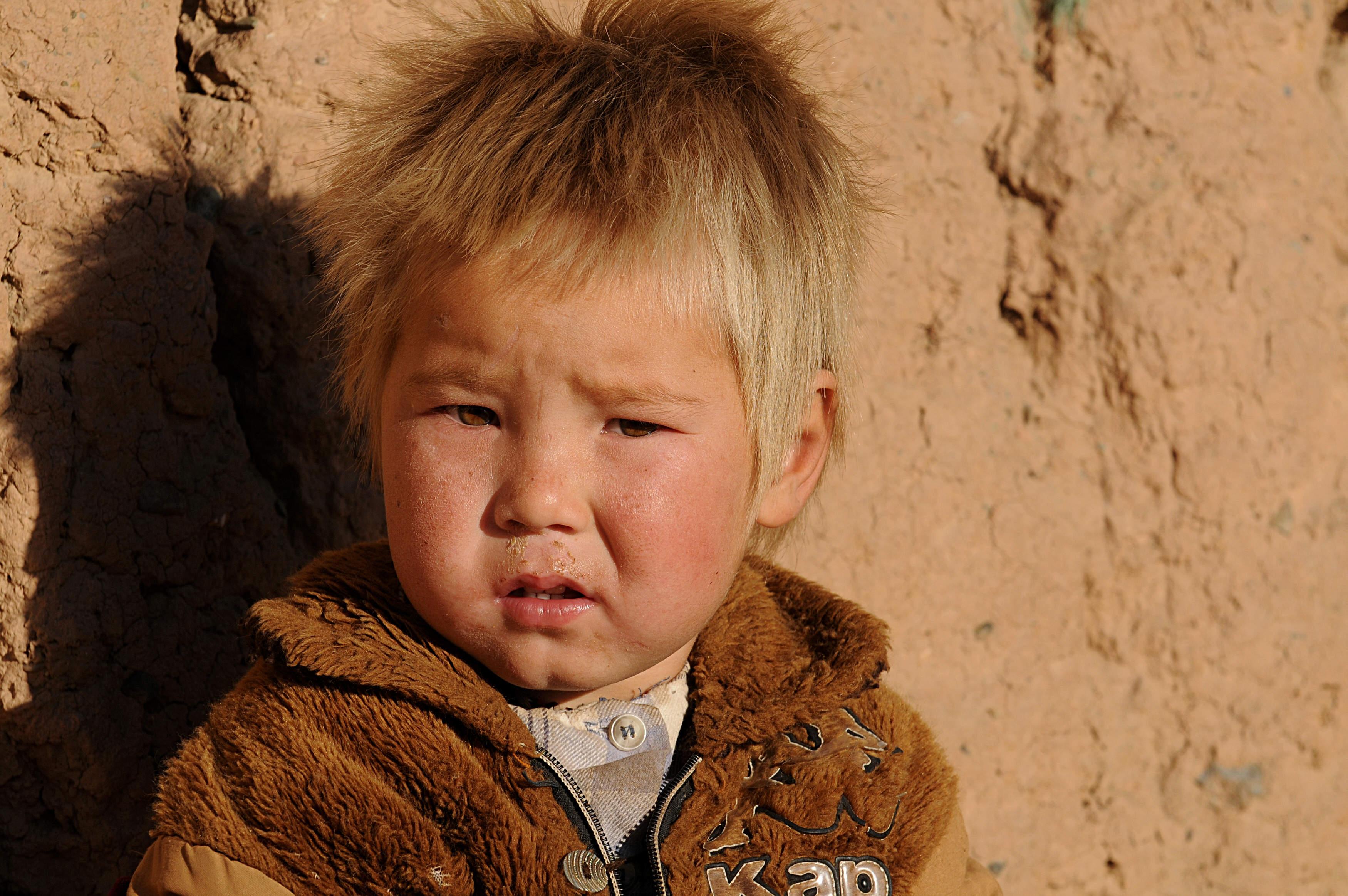 Фото чистокровного узбека рыжего
