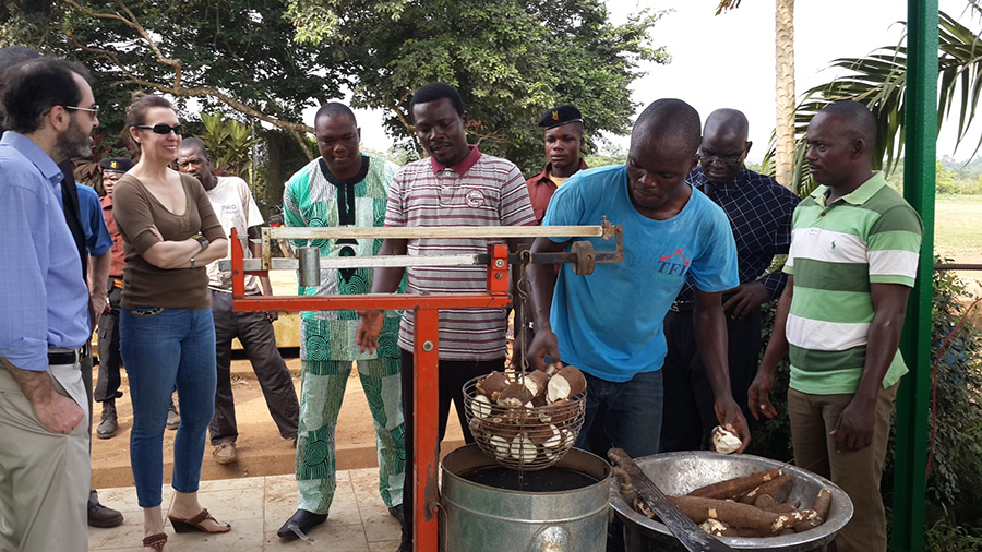 Alex Thier (far left) looks on as a Nigerian farmer checks the starch level of his cassava crop. (Photo Credit: USAID)